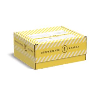 Почтовая коробка Отправление 1 классом Тип Ж1 175х120х100 мм